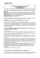 Conseil Municipal NOVEMBRE 2020