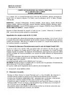 Conseil Municipal JANVIER 2021